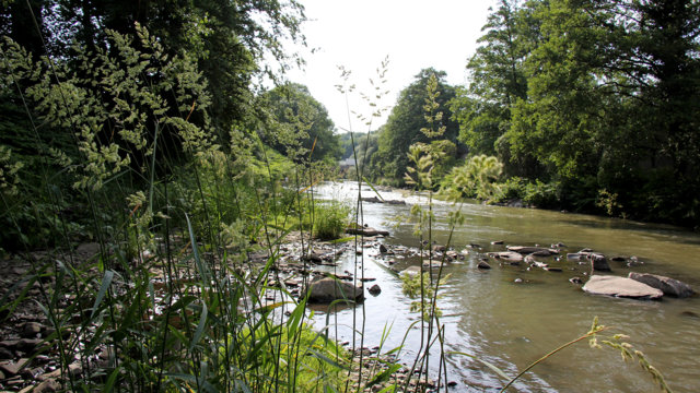 naturnahe Wupper in Wuppertal Sonnborn, Foto: Wupperverband